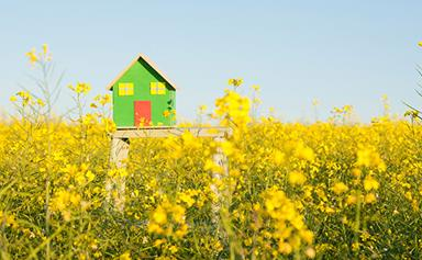 Spring clean your home loan and save