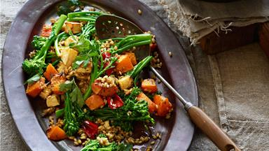 Warm barley and vegetable salad