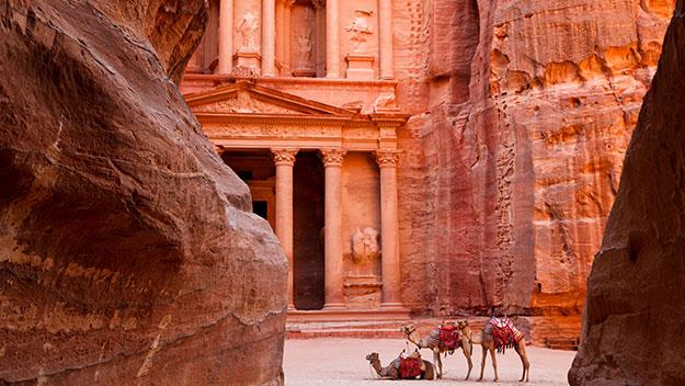 Camels in front of temple in Jordan