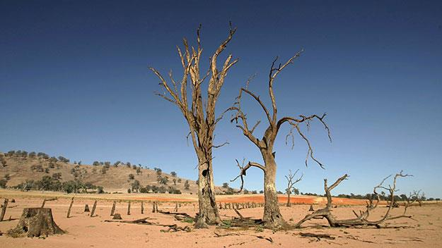 The drought persists in Southern Queensland.
