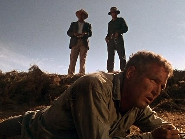 "Cool Hand Luke Misquote: ""What we have here is a failure to communicate."" Actual movie quote: ""What we've got here is failure to communicate."""
