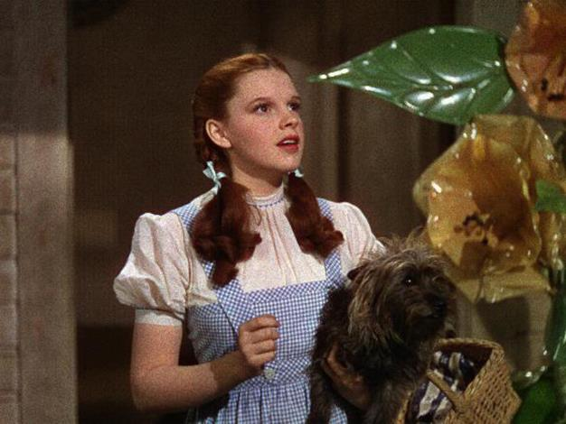 "The Wizard of Oz Misquote: ""Toto, I don't think we're in Kansas anymore."" Actual movie quote: ""Toto, I've a feeling we're not in Kansas anymore."""