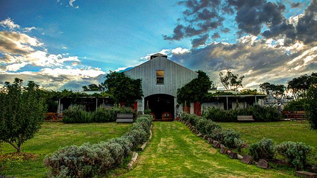 Lowe's Winery, set at on the historic Tinja homestead, is home to one of the region's best vineyards.