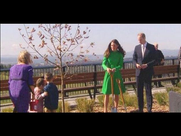 William and Catherine begin the tree planting ceremony. Photo: Twitter
