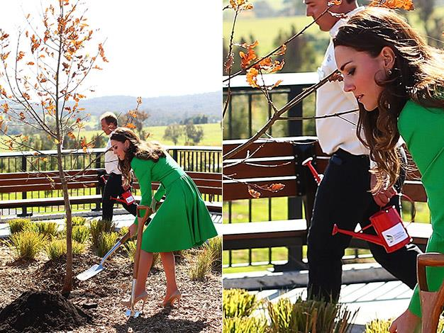The Duchess planting the picturesque oak tree will be an enduring image from this tour. Photo: Getty Images