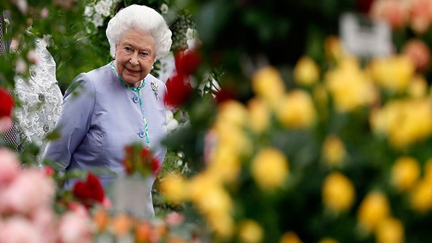 Queen Elizabeth flower show