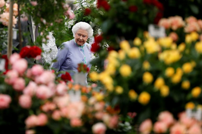 The Queen looked relaxed while enjoying the floral displays.