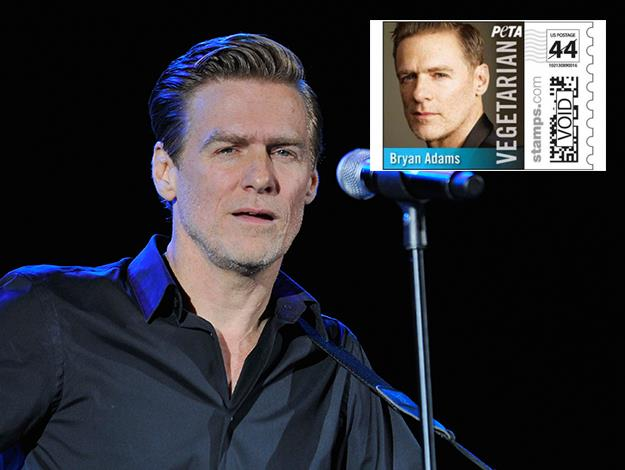 "Bryan Adams campaigns for Greenpeace and PETA and says: ""I've made a conscious decision not to be part of the cycle of killing animals because I couldn't see the point of crusading for Greenpeace and then eating a fish."""