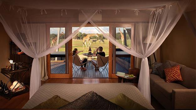 A Zoofari Lodge.