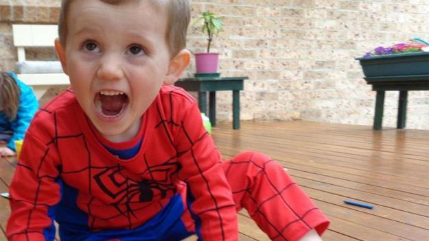 Police have been searching for toddler William Tyrell for 11 days.