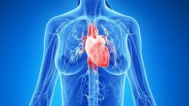 Stressed out women at higher risk of heart disease