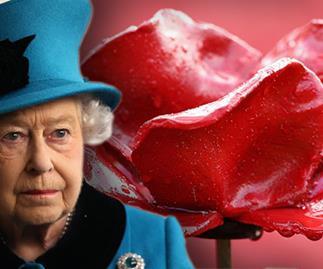 Queen Elizabeth red poppy