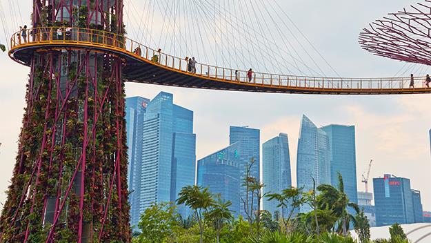 Singapore metal trees walk way