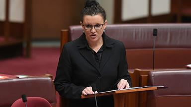Controversial Senator Jacqui Lambie quits Palmer United Party
