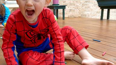 Spiderman toy found in search for William Tyrrell
