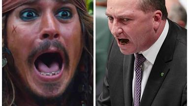 Johnny Depp has decided what to do with his dogs, Pistol and Boo.