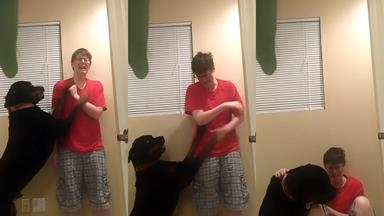 Beautiful: Dog protects and comforts owner during a panic attack
