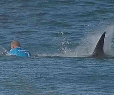 Shark attacks surfer Mick Fanning live on TV