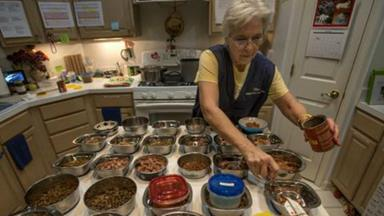 Woman turns home into retirement house for elderly pets
