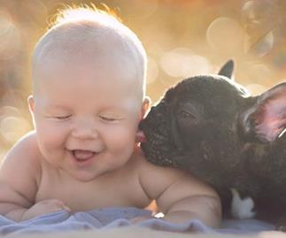 Baby and bulldog: Unlikely best friends