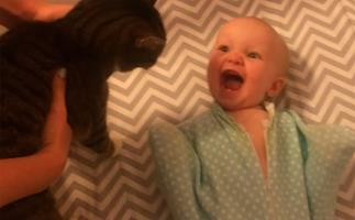 This baby really, REALLY loves her cat
