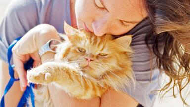 Why your cat doesn't care about you