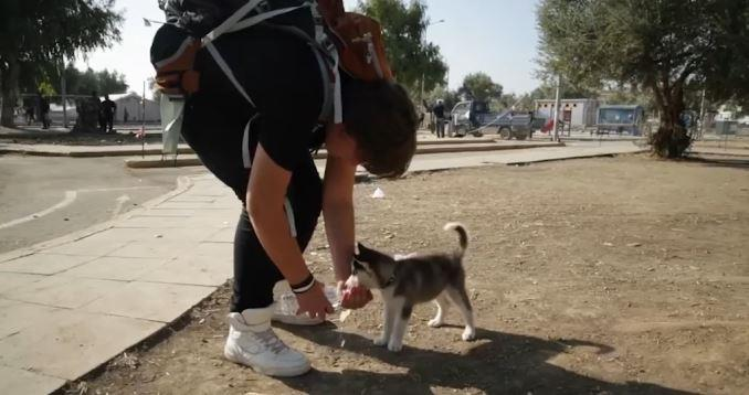 Syrian refugee carries puppy 500km to safety