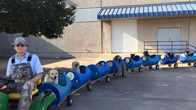 Sweet old man takes rescue dogs on 'adventures' in handmade choo-choo train
