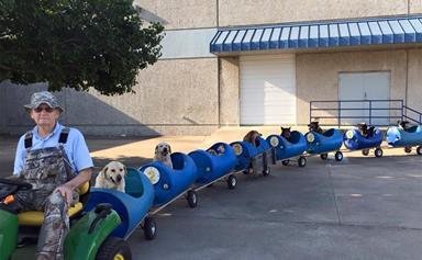 Sweet old man takes rescue dogs on 'adventures' in handmade choo-choo train