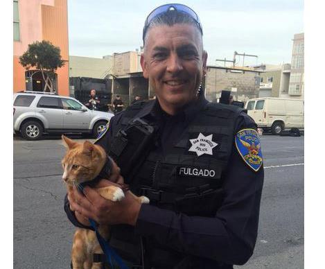 Cat saves suicidal mans life