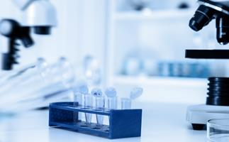 American woman loses court battle to keep embryos