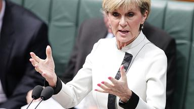 Julie Bishop under fire for $30,000 flight