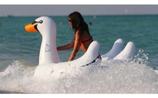 Teens rescued after being blown 1.5km on inflatable swan