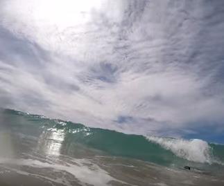Video: Shark swims between dad and daughter at Papamoa beach