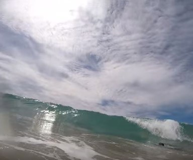 Video: Shark swims between dad and daughter at Papamoa beach