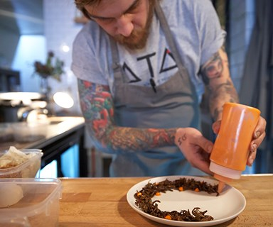 Grub's up: The insect eating trend