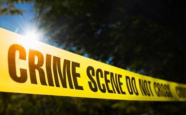 Paedophile hunters mistakenly murder wrong man