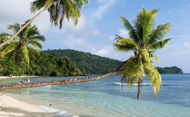 Fiji holiday becomes life in prison