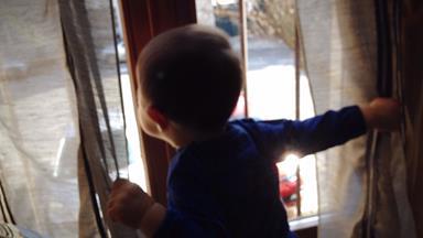 Parents lose custody of vegan toddler