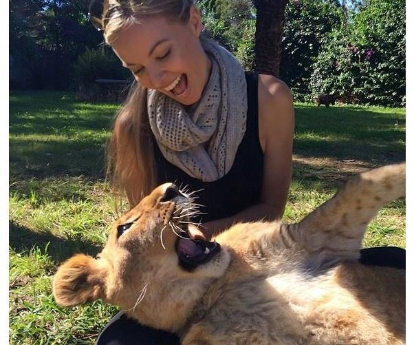 Zambi Wildlife Retreat