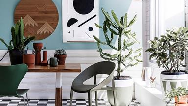 Three indoor plants that will naturally clean the air you breathe