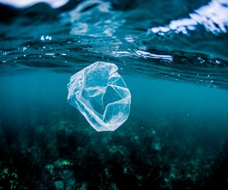 QLD to ban single-use plastic bags from 2018