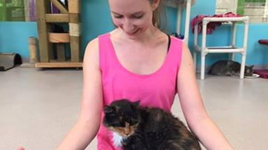 Meowmaste: You can now take a yoga class with rescue cats