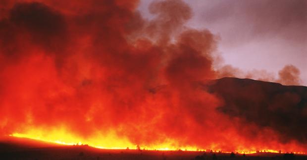 Bushfire simulation improves prediction - Australian ...