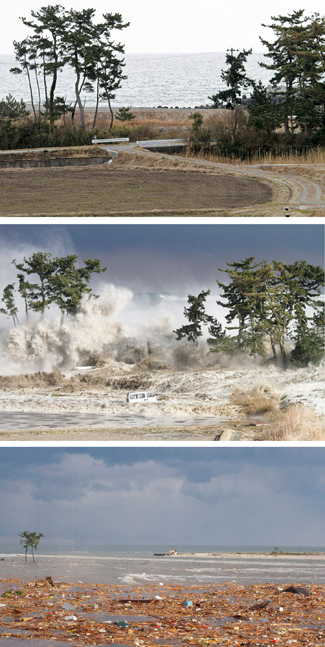 Warning about tsunamis: why they're hard to predict ...