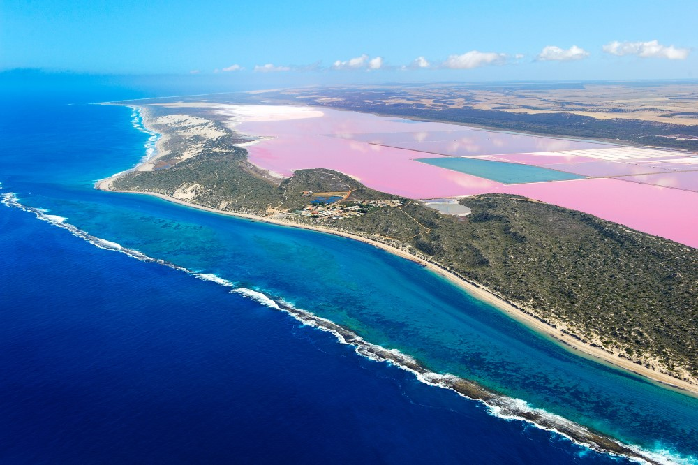 Image result for pink lake australia