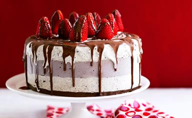 These are our best Christmas ice-cream cake recipes
