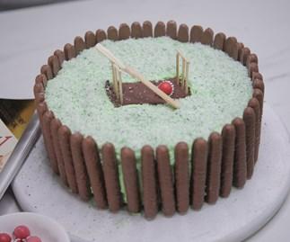 Cricket pitch birthday cake