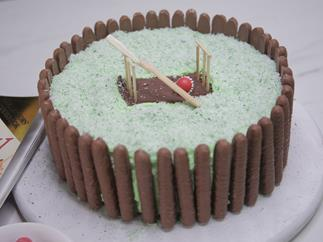 Cricket pitch birthday cake