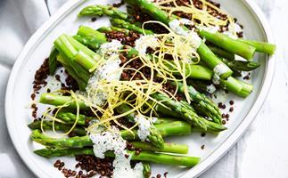 Asparagus with crisp lentils and herb yoghurt